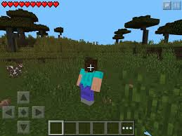 MINECRAFT PE ON Ios